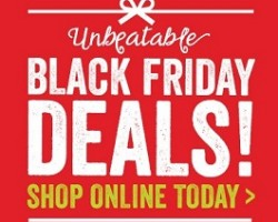 World Market Black Friday 2014 Ad Sale – BOGO Free Sale!